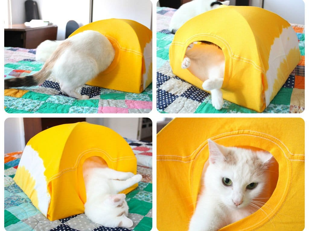 cat house 1123