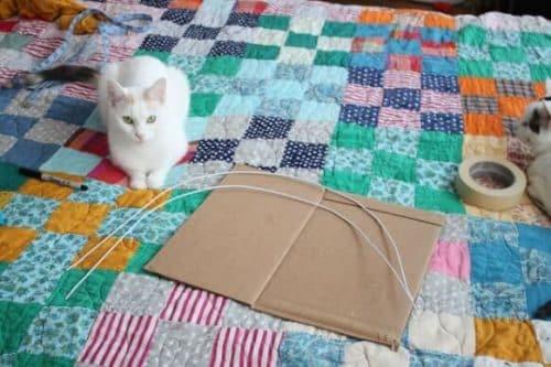 cat house 3