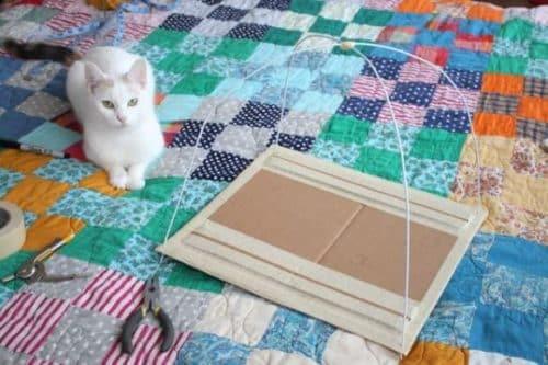 cat house 7